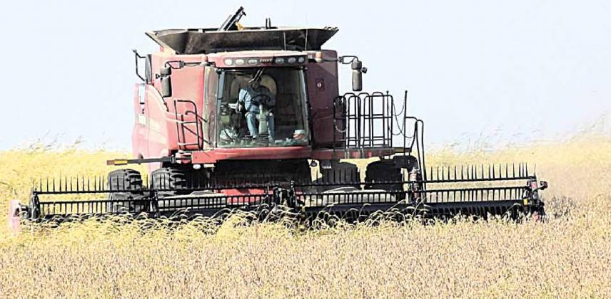 Harvest running ahead of normal